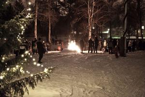 En stor skara människor samlades inför julgransutdansningen i Nisserska parken.