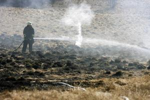 Bilden är tagen vid en annan gräsbrand.