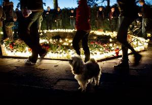 FÖR ALLA. Minneslunden samlar människor i alla åldrar och även någon hund. Maja är här med matte Anna-Sara Tengman.