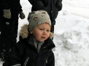 Treårige Albin Melin gillade vad han såg – och hörde.