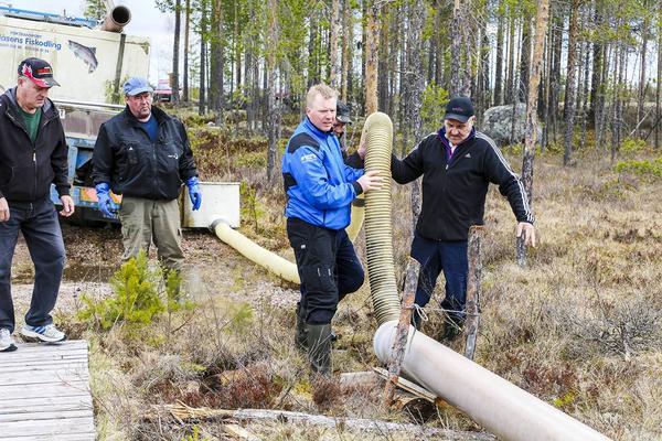 Håkan Jonsson lyfter röret och försöker få ut de sista öringarna i Akerstjärn.