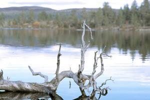 24 juli 2015. Två medelålders män och en sexårig pojke omkom i en kanotolycka ute på sjön Rogen. Alla tre var danska medborgare och var ute på en veckas kanotfärd i området.