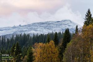 Säsongens första snö på Åreskutan.
