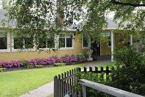 Kägelholmen har många vackra blommor, både i den stora planteringen och i amplarna.