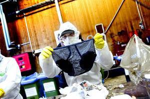 KALSONG. Mattias Larsson visar upp en kalsong han har hittat bland avfallet.