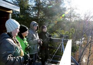Anette Nilsson, Ingalill Teljå, Ingela Wallin och Monica Nilsson trivs i vårsolen.Foto: Samuel Borg