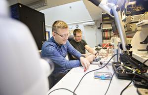 Carl Karlsson och Adis Kurtalic startade sitt konsultföretag 2014.