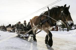 Forkörarna tog vägen förbi Orrmo. I täten nordsvenska valacken Kasper som körs av Veronica Westerling från Älvdalen med Annika Hansson vid sin sida.