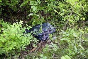 Det var ett omfattande spaningsarbete från polisens aktionsgrupp som ledde till att amfetaminhärvan kunde nystas upp. Genombrottet kom när polisen upptäckte nära två kilo amfetamin i en soppåse i en skog i Mellringe.