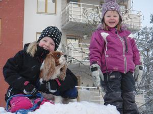 Mina barnbarn Ella och Olivia leker med min hund Charlie i en stor snöhög vid Råby Centrum. Vi hade så kul! Charlie fick mycket motion, tjejerna släpade med honom upp på höjden massor med gånger! Olivia tyckte han skulle lära sig gå i djup snö!