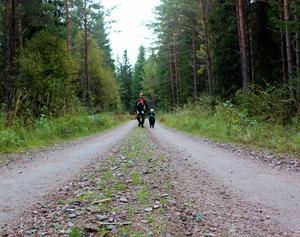 Min man Pontus, med Elsa på magen och Werner i handen. På väg hem efter en dag i skogen!