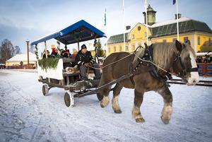 Ardennern Rocky och kusken Håkan Andersson från Falun hade fullt upp med att skjutsa åksugna runt gruvområdet.