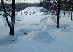 Snö vid Anundshög