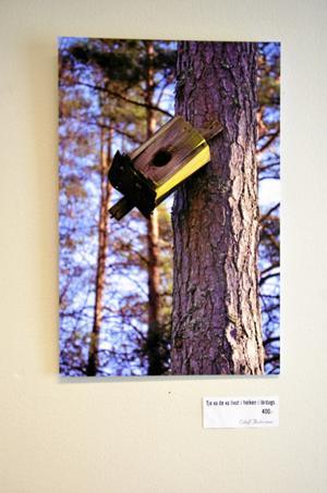 """""""Tjo vad det var livat i holken i lördags"""", skriver Elof Andersson under en av sina bilder."""