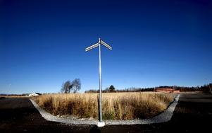 Belysning, asfalterade gator, vägskyltar och de första villorna är på plats i Nyponlunden, Örebros nyaste villaområde. Men av de totalt 58 tomterna är ännu bara 13 sålda, den senaste finanskrisen kan vara en orsak.