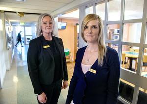 Fler samhällstjänstplatser. Det önskar sig  kriminalvårdsinspektör Yvonne Tollerup och frivårdsinspektör Sally Grip.
