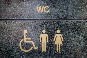 Offentlig toalett som även är handikappanpassad Foto: Nora Lorek / TT