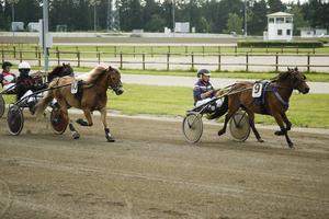 Sommarens dubbeltrav för ponnyhästar i Östersund lockade som vanligt många deltagande. Östersund höll sig även längst framme i den nya tävlingen Travskoleligan.