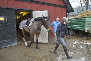 Sophia och Majsan är på väg ut för att träna i ridhuset. Sophias pojkvän Maximilian Merkl har fått lära sig att mocka och vara nära hästar sedan han träffade Sophia.