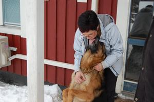 Caisa Strömberg har fyra hundar.