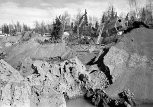 1964 drabbades Alaska av ett jordskalv med magnituden 9,2. På bilden syns förödelsen vid L Street in Anchorage. Foto: AP/TT