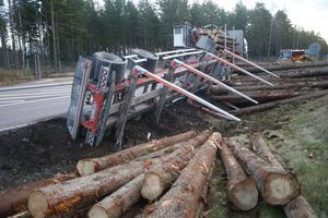 Timret från lastbilen hamnade i diket.