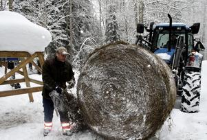 I förra veckan var viltvårdaren Mikael Folkesson och Johnny Gustafsson ute i Skogaholm och körde ut ensilagebalar till skogens vilt.BILD: SAMUEL BORG
