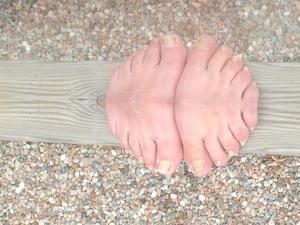 Alla vet nog hur en fingersvamp ser ut, men den här gången har jag lyckats (för första gången?) fånga en fotsvamp på bild! Bilden är inte manipulerad utan det är en spegelbild av min kompis Kristers tår och en bit av fötterna som han stoppade under det glasstaket som jag har runt vår uteplats ute på landet.