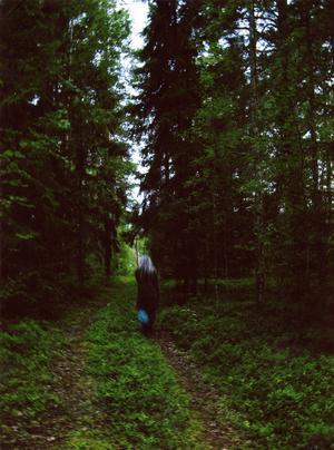 Åkre utanför Delsbo på kvällen.Foto: Petra Howard, StockholmJuryns omdöme: Den här bilden visar den mystiska biten av Hälsingland. Man väntar sig att ett troll eller en älva ska komma fram ur skogen när som helst.
