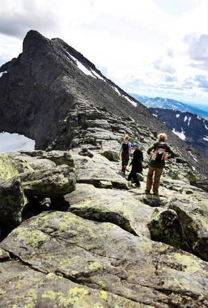 Förstudien innehåller en sammanställning över naturvärden och Sylarna är ett populärt mål för vandrare i området.