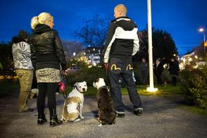 Amstaffen Izzy följde ljuständningen med blicken medan mamma Ziara höll ögonen på husse och matte Marcus och Angelica Kalliomäki och lillhusse Noak som alla deltog i manifestationen.