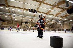 Treårige Tiam Eldh Jonsson är ensam i sin hockeyintresserade familj om att heja på Brynäs. Men han har gjort sitt val. Och i framtiden ska han spela i deras A-lag.