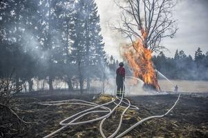 Gräsbranden spred sig och blev en markbrand, räddningstjänsten fick dock snabbt kontroll över branden som därefter kunde släckas.