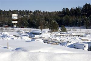 Nedläggningshotade. 62 odlingslotter på Vallby kommer att försvinna till sommaren. Anledningen är att det inte finns någon fungerande styrelse i föreningen.Foto: Magnus Östin