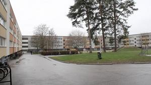 Gården intill Tunadalsgatan.