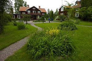 Slingrande. Mjukt slingrande gångar kännetecknar 1880-talets trädgård.