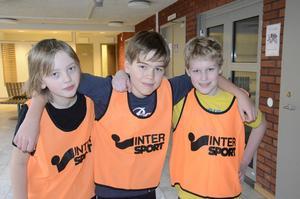 Första kuppen. Albin Klarin, Kalle Johansson och Ludvig Skeppner tycker basket är en kul lagsport och deltog i sin första kupp i söndags.