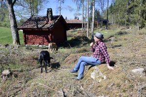 Fredrik Federley med hundarna Elsa och Nancy i Holan, Björbo..