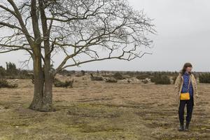 Pia Sandströms ljudkonstverk