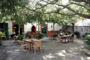 Sa Rota d'en Palerms frukost serveras under skuggande grönska.