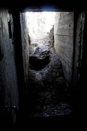 Utsikten från skyddsvärnet där sex soldater skulle övernatta, i sommar har Göran Normann och fler bybor grävt ut ingången för hand, nu återstår att göra den mer tillgänglig.