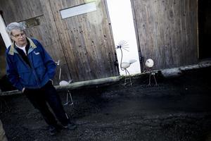 """STENKUL. Bo Norrbys fåglar i sten och rostfritt stål är inte bara fina och roliga att se på. Det kan ta en hel arbetsvecka att tillverka en fågel och då har Bo inte räknat med tiden det tar att hitta en lämplig sten i skogen. """"Det ligger mycket jobb bakom och det kan vara lite bökigt ibland"""", säger han. Foto: Veronika Ljung-Nielsen"""