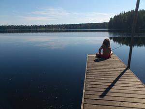 Min dotter Elsa 4,5 år fiskar abborre från bryggan en underbar sommardag.