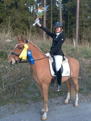 Amanda Frestadius och Prins Pogi blev tvåa i FEI:s lagprogram och trea i mästerskapsprogrammet.