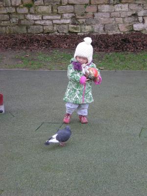 Barnbarnet Linnéa med sin nya boll, som intresserar duvan. På en lekpark i St Cloud (utanför Paris) vecka 7, 2011. Jätteskönt väder.