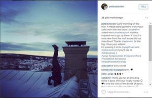På instagram publicerar Peter bilder på hans yoga och huvudstående på konstiga platser under namnet peterselander.