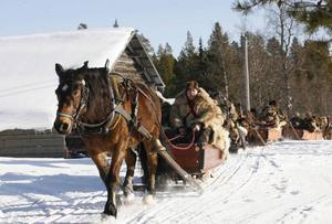 Färdledare är Gunnar Ahlzén och hästen Putte. Gunnar Ahlzén är även ordförande i Forbondeföreningen som arrangerar resan. Den här gången för 31: året.