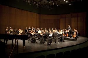 Det har föreslagits att Gävle symfoniorkester ska minskas för att budgeten ska kunna hållas.