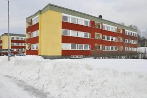 Bräcke kommuns fastighetsförvaltare Mikael Brink bekräftar att det nu finns ytterligare kackerlacksutbrott i centrala Bräcke, närmare bestämt i bostadsområdet Lokatten.
