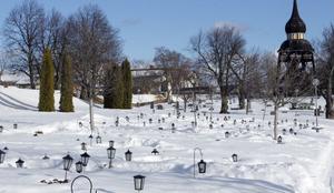 Snillrika, flygande tjuvar stjäl gravljus på kyrkogården i Ljusdal. Fast hängande ljuslyktor får än så länge vara i fred. Dem har kråkorna inte hittat nåt sätt att plundra på ljus.